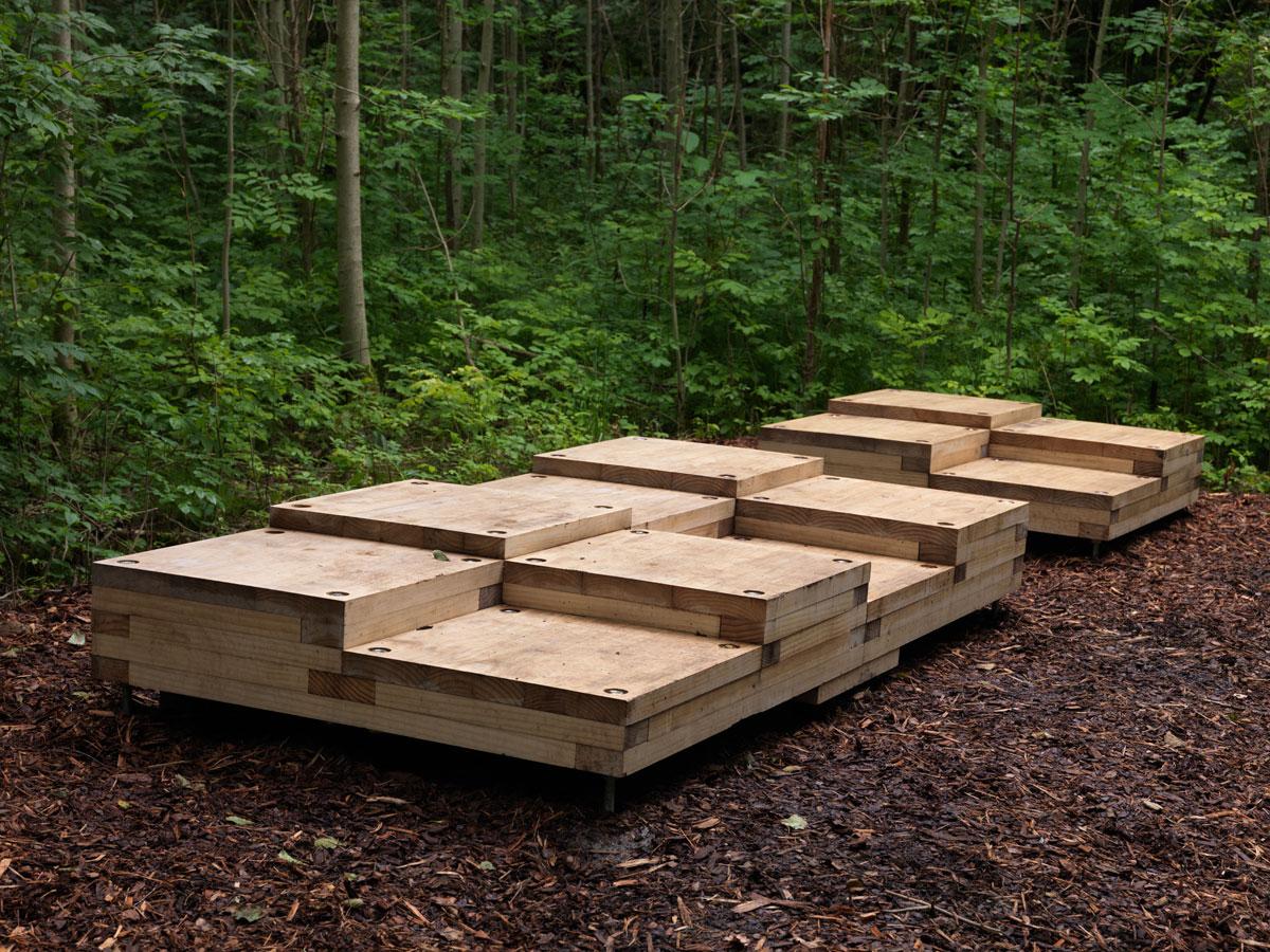 kaels - pusterommet skogen